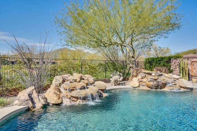41318 N Club Pointe Drive N, Phoenix, AZ 85086 (MLS #6046317) :: Brett Tanner Home Selling Team