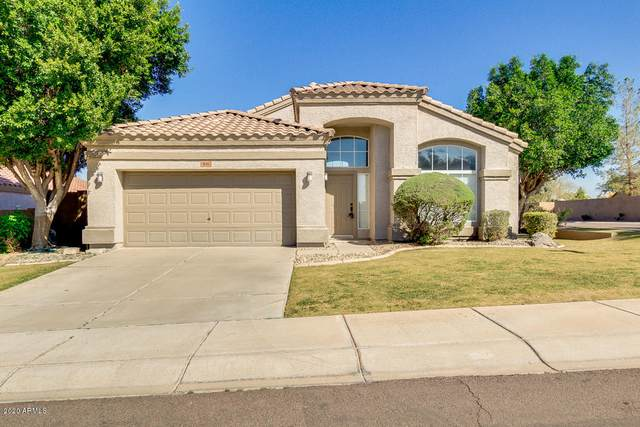 816 W Carob Drive, Chandler, AZ 85248 (MLS #6046376) :: The Kenny Klaus Team