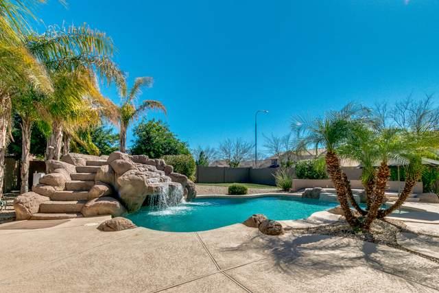 2837 N 103RD Drive, Avondale, AZ 85392 (MLS #6046619) :: Dave Fernandez Team | HomeSmart
