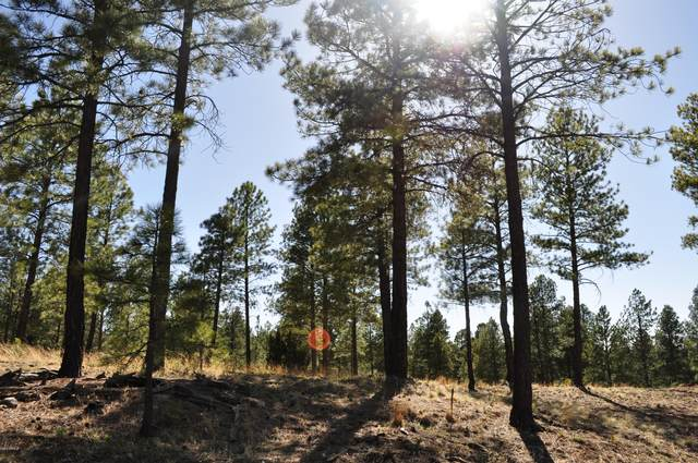 3563 S Clubhouse Circle, Flagstaff, AZ 86004 (MLS #6046663) :: Riddle Realty Group - Keller Williams Arizona Realty