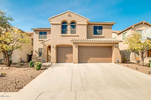 5204 W Bent Tree Drive, Phoenix, AZ 85083 (MLS #6046765) :: REMAX Professionals