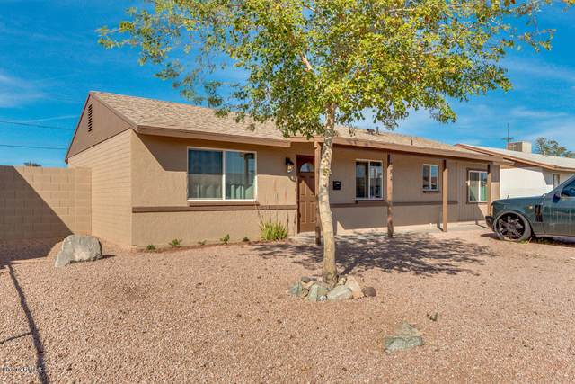 784 E Commonwealth Place, Chandler, AZ 85225 (MLS #6046846) :: Brett Tanner Home Selling Team