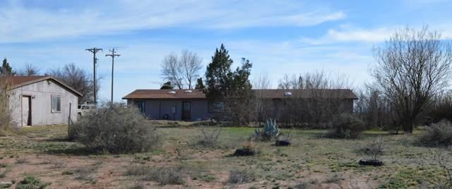 3994 W Davis Road, McNeal, AZ 85617 (MLS #6046902) :: Yost Realty Group at RE/MAX Casa Grande
