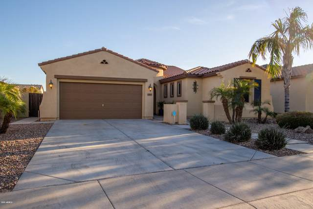 14885 W Luna Drive N, Litchfield Park, AZ 85340 (MLS #6047132) :: Riddle Realty Group - Keller Williams Arizona Realty
