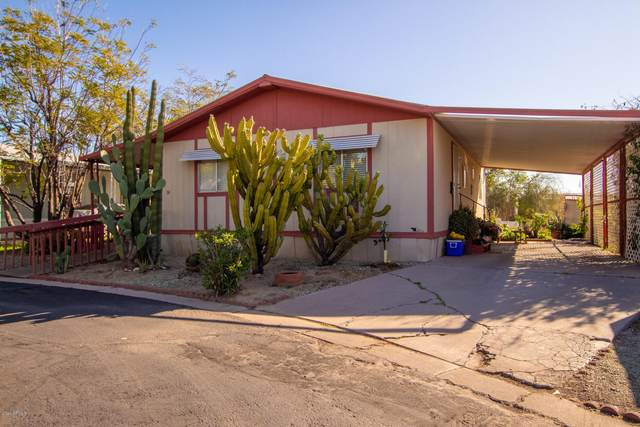 6227 N Litchfield Road #34, Litchfield Park, AZ 85340 (MLS #6047241) :: Riddle Realty Group - Keller Williams Arizona Realty