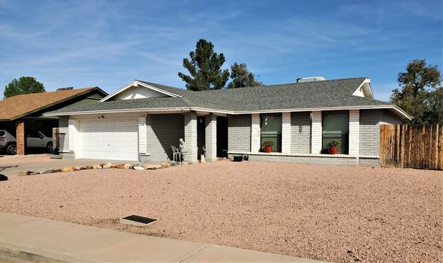 3238 E El Moro Circle, Mesa, AZ 85204 (MLS #6047346) :: Yost Realty Group at RE/MAX Casa Grande