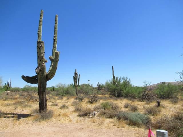 7073 E Ashler Hills Drive, Scottsdale, AZ 85266 (MLS #6047382) :: Conway Real Estate
