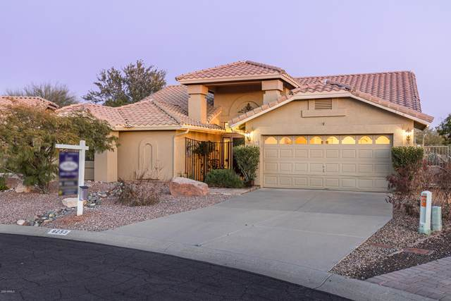 8253 E Lavender Drive, Gold Canyon, AZ 85118 (MLS #6047488) :: The Everest Team at eXp Realty