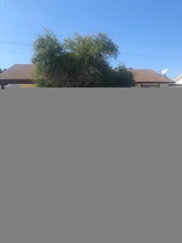 7434 S 46TH Street, Phoenix, AZ 85042 (MLS #6047539) :: The Kenny Klaus Team