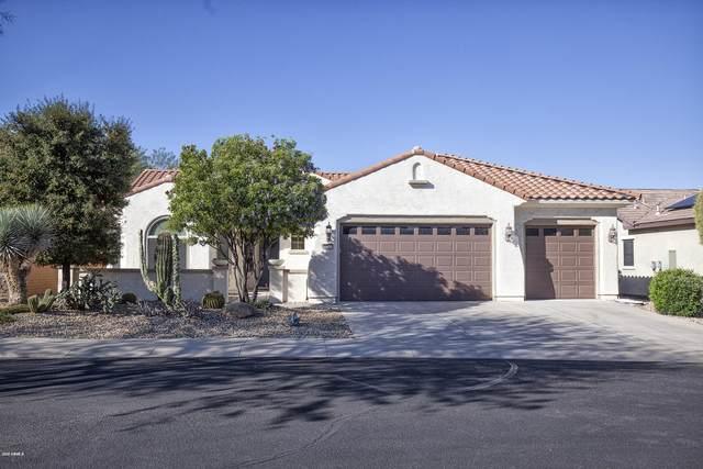 20392 N 268TH Avenue, Buckeye, AZ 85396 (#6047675) :: AZ Power Team | RE/MAX Results