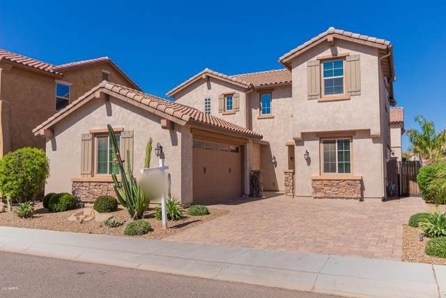 268 E Kaibab Drive, Chandler, AZ 85249 (MLS #6047708) :: The Daniel Montez Real Estate Group