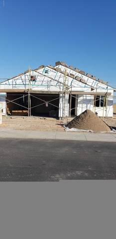 24740 W Jessica Lane, Buckeye, AZ 85326 (MLS #6047714) :: Riddle Realty Group - Keller Williams Arizona Realty