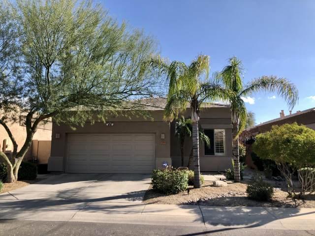 6379 W Pontiac Drive, Glendale, AZ 85308 (MLS #6047836) :: Brett Tanner Home Selling Team