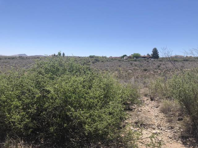 Lot 102 Gila Drive, Tombstone, AZ 85638 (MLS #6047919) :: NextView Home Professionals, Brokered by eXp Realty