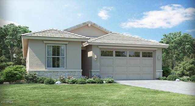 45424 W Norris Road, Maricopa, AZ 85139 (MLS #6047961) :: Revelation Real Estate