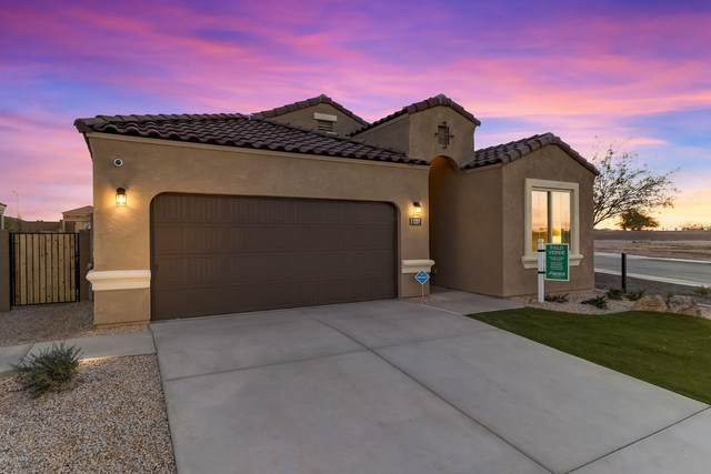 3475 N 309TH Drive, Buckeye, AZ 85396 (MLS #6048206) :: Nate Martinez Team