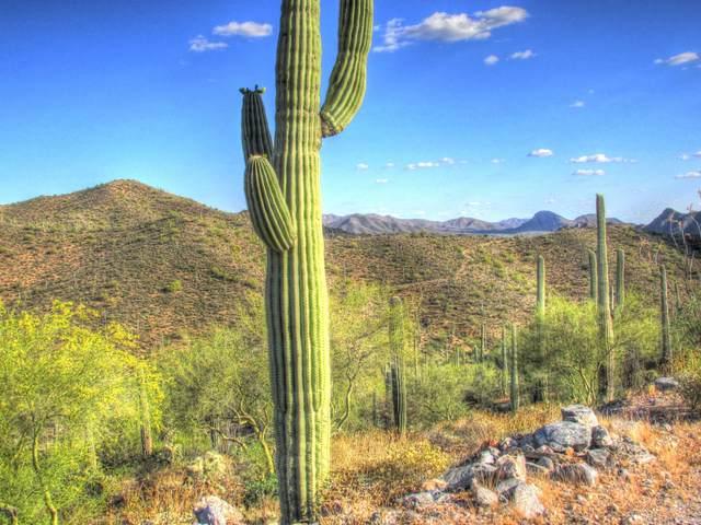 0000 N Elephant Butte Road, Queen Valley, AZ 85118 (MLS #6048239) :: Revelation Real Estate