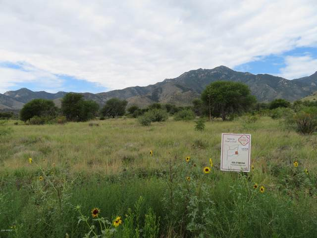 Lot 48 Seven Oaks Drive, Hereford, AZ 85615 (MLS #6048327) :: Conway Real Estate
