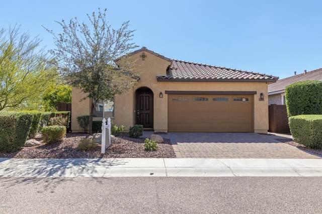 5505 W Buckskin Trail, Phoenix, AZ 85083 (MLS #6048384) :: The Laughton Team
