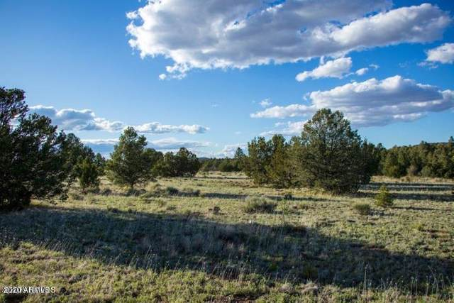 F Cataract Canyon Rd Drive, Williams, AZ 86046 (MLS #6048403) :: Homehelper Consultants