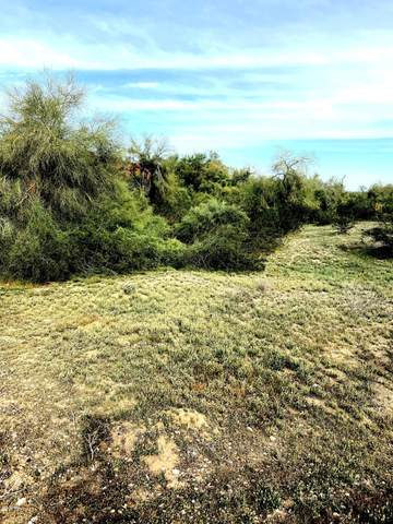 8507 N 192ND Avenue, Waddell, AZ 85355 (MLS #6048421) :: Arizona Home Group