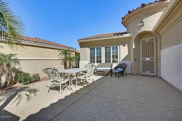 13656 W Nogales Drive, Sun City West, AZ 85375 (MLS #6048505) :: Long Realty West Valley