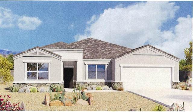 30535 W Fairmount Avenue, Buckeye, AZ 85396 (MLS #6048597) :: Nate Martinez Team