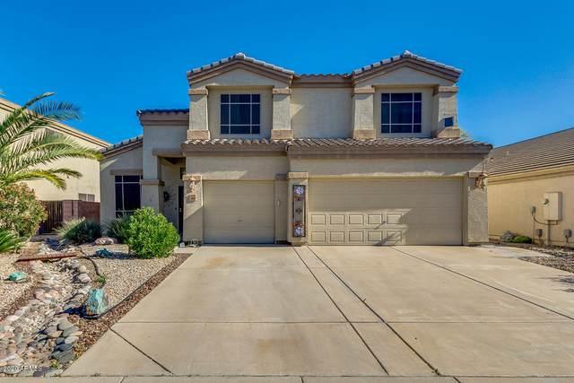 3494 W Allens Peak Drive, Queen Creek, AZ 85142 (MLS #6048619) :: Revelation Real Estate