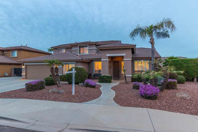 8837 W Runion Drive, Peoria, AZ 85382 (MLS #6048717) :: Scott Gaertner Group