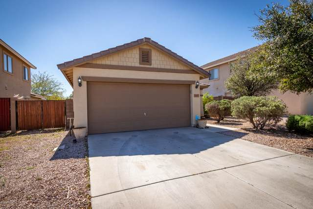 1687 W Appaloosa Way, Queen Creek, AZ 85142 (MLS #6048738) :: Power Realty Group Model Home Center