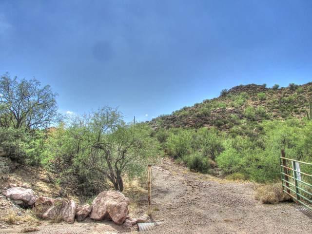 156 S Piedra Negra Drive, Queen Valley, AZ 85118 (MLS #6048908) :: Revelation Real Estate