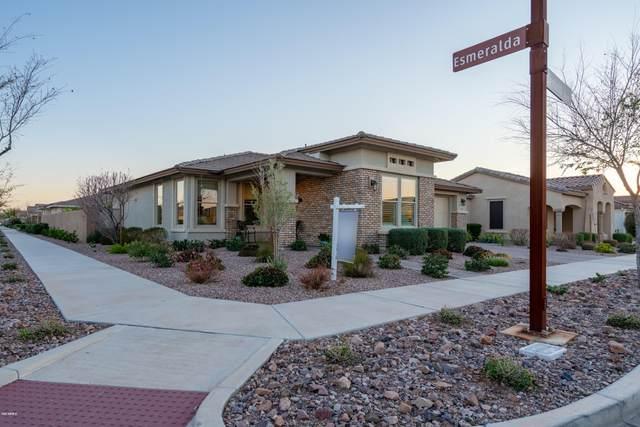 10311 E Thunderbolt Avenue, Mesa, AZ 85212 (MLS #6048948) :: My Home Group
