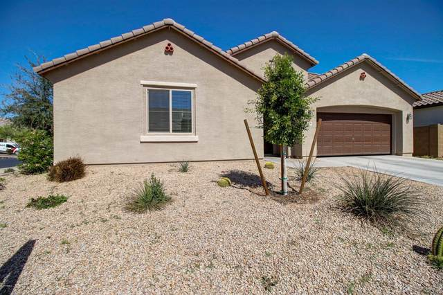 3038 W Lynne Lane, Phoenix, AZ 85041 (MLS #6049020) :: Brett Tanner Home Selling Team