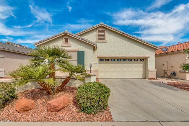 18128 W Sammy Way, Surprise, AZ 85374 (MLS #6049036) :: Long Realty West Valley