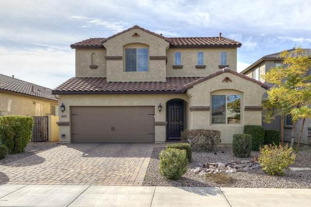 3695 E Lodgepole Drive, Gilbert, AZ 85298 (MLS #6049249) :: Revelation Real Estate