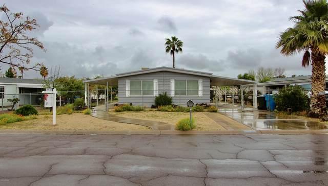 424 E Charleston Avenue, Phoenix, AZ 85022 (MLS #6049272) :: Brett Tanner Home Selling Team