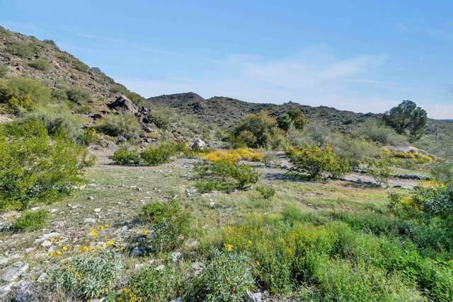 1510 W Yucca Street, Phoenix, AZ 85029 (MLS #6049302) :: Riddle Realty Group - Keller Williams Arizona Realty