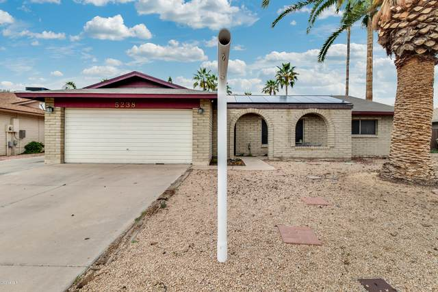 5238 W Dailey Street, Glendale, AZ 85306 (MLS #6049328) :: Keller Williams Realty Phoenix