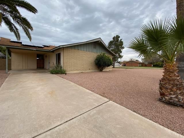 11201 N 34TH Avenue, Phoenix, AZ 85029 (MLS #6049412) :: Brett Tanner Home Selling Team