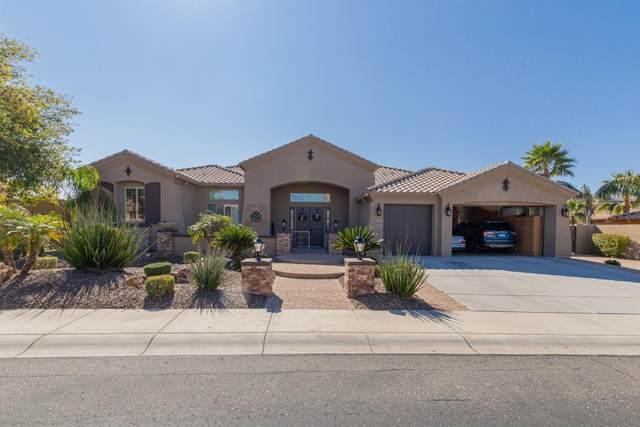 9173 W Andrea Drive, Peoria, AZ 85383 (MLS #6049456) :: Howe Realty