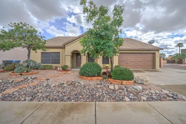 4120 W Creedance Boulevard, Glendale, AZ 85310 (MLS #6049467) :: Brett Tanner Home Selling Team
