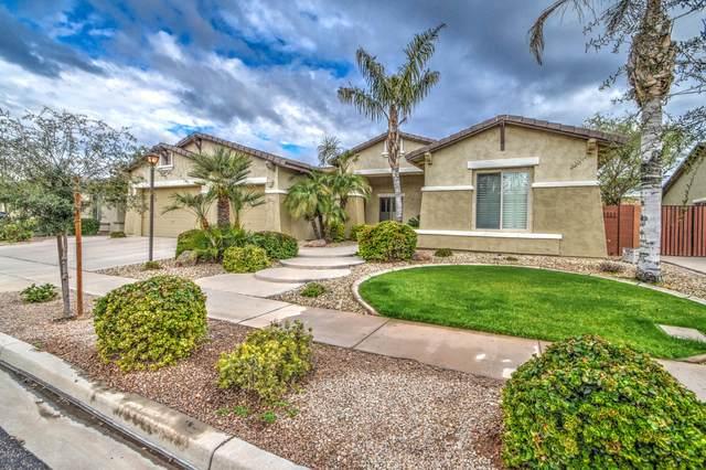 2204 E Canyon Place, Chandler, AZ 85249 (MLS #6049475) :: The Daniel Montez Real Estate Group