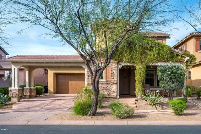 9340 E Horseshoe Bend Drive, Scottsdale, AZ 85255 (MLS #6049505) :: Revelation Real Estate