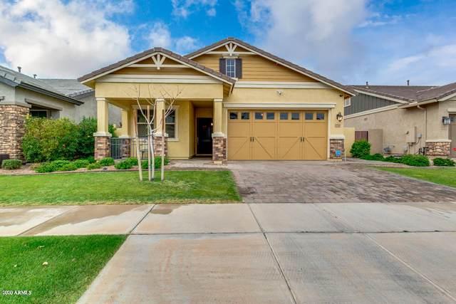 3046 E Arabian Drive, Gilbert, AZ 85296 (MLS #6049542) :: Revelation Real Estate