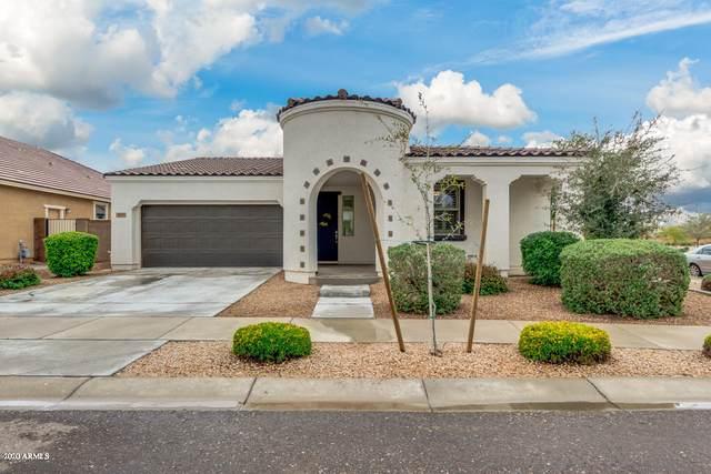 22433 E Via Del Verde, Queen Creek, AZ 85142 (MLS #6049606) :: The Property Partners at eXp Realty