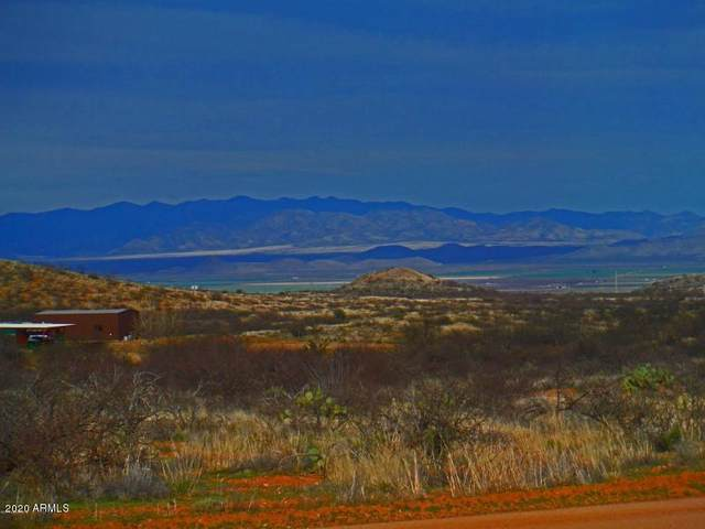 TBD W Stetson Drive, Elfrida, AZ 85610 (MLS #6049629) :: CANAM Realty Group
