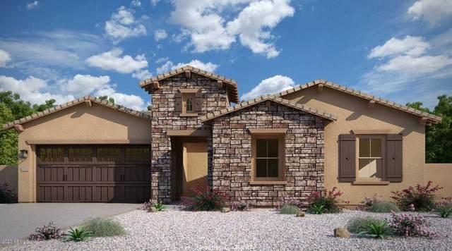 9409 W Parkside Lane, Peoria, AZ 85383 (MLS #6049665) :: Nate Martinez Team