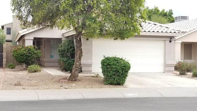 19611 N 49TH Avenue, Glendale, AZ 85308 (MLS #6049743) :: Brett Tanner Home Selling Team