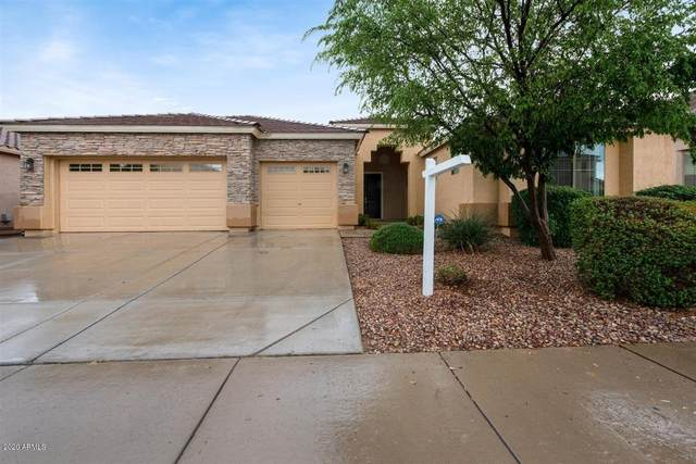 18359 N Falcon Lane, Maricopa, AZ 85138 (MLS #6049746) :: Revelation Real Estate