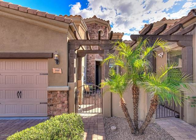 6202 E Mckellips Road #202, Mesa, AZ 85215 (MLS #6049775) :: Brett Tanner Home Selling Team